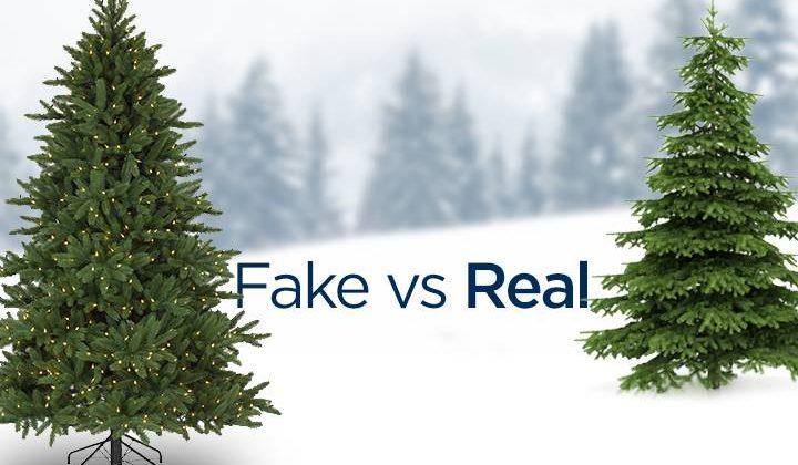 real-vs-fake